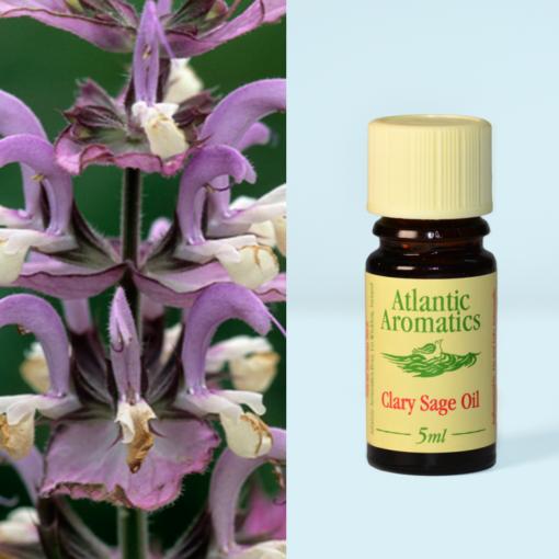 Atlantic Aromatics Clary Sage Oil