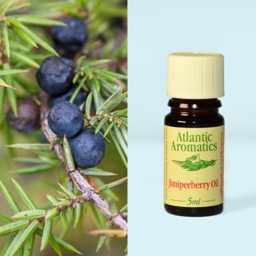 Atlantic Aromatics Junipberry OiL