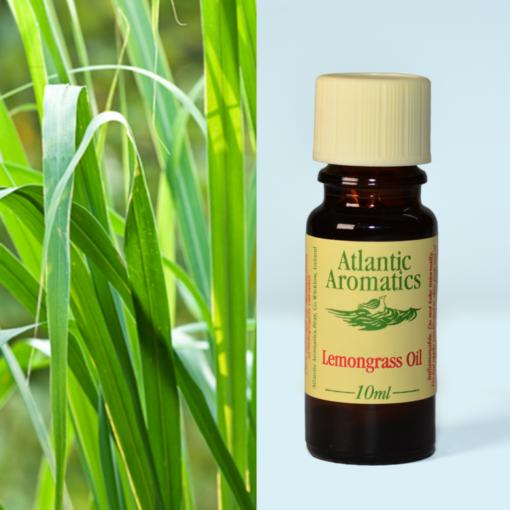Atlantic Aromatics Lemongrass Oil