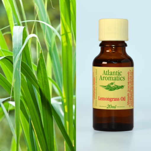 Atlantic Aromatics Lemongrass Oil 20ml
