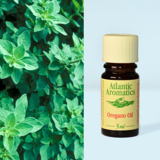 Atlantic Aromatics Oregano Oil