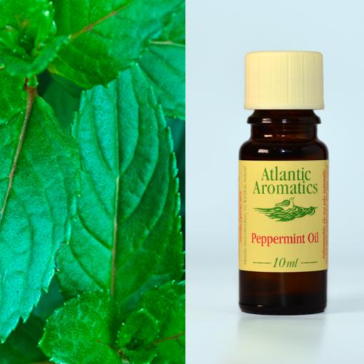 Atlantic Aromatics Peppermint Oil