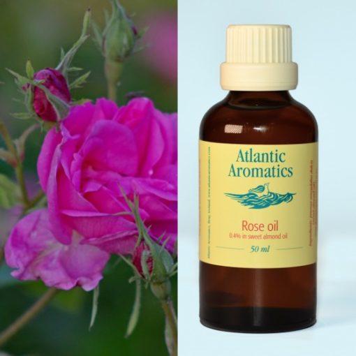 Atlantic Aromatics Rose Oil 50ml