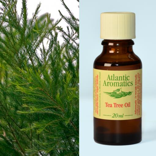 Atlantic Aromatics TT Oil 20ml