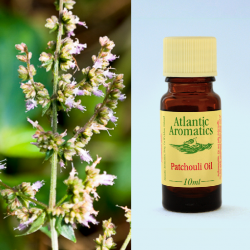 Atlantic Aromatics Patchouli Oil