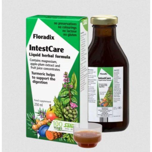 Floradix Intest Care